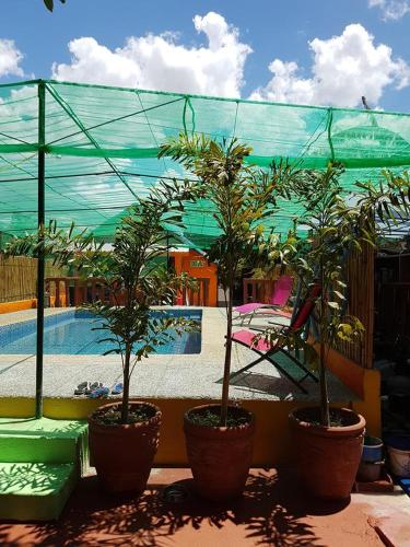 The Bamboo Orange Guesthouse