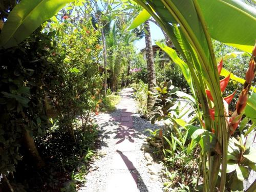 Tropical Sands Dominical Eco Inn Photo