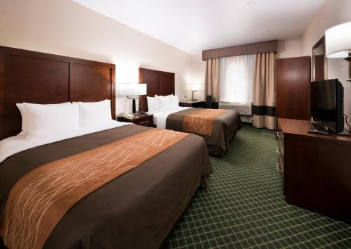 Comfort Inn & Suites Oakland Airport Photo