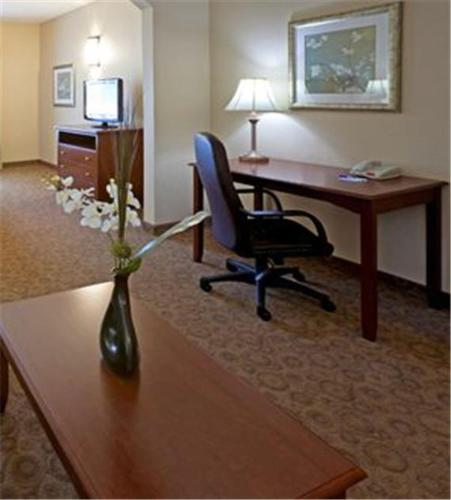 Holiday Inn Express Hotel & Suites Cedar Hill Photo