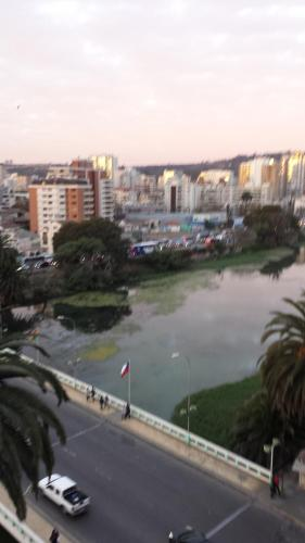Departamento Viña del Mar Rapa Nui Photo