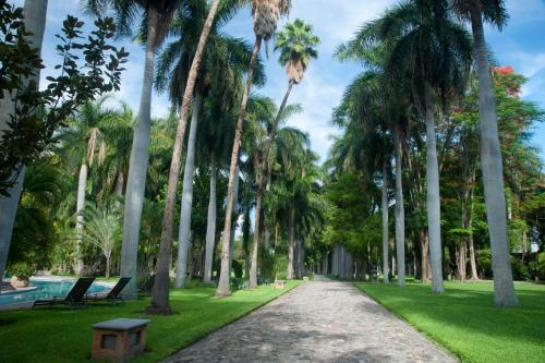 Hacienda San Gabriel de las Palmas Photo
