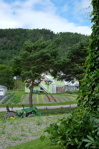 Jardin Potager Photo