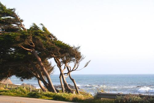 Captain's Cove Inn - Cambria, CA 93428