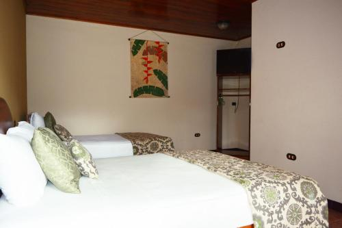 Arenal Hostel Resort Photo