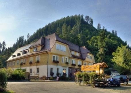 Hotel Teinachtal Photo