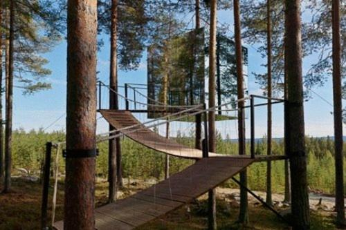 Treehotel Harads Low Rates No Booking Fees