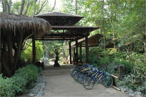 Momchailai Forest Retreat Photo