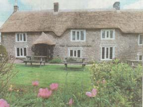 Thatched Cottage Photo