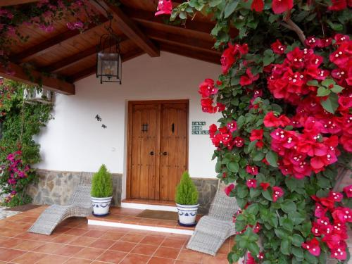 Immagine di Bed & Breakfast | Guest House Casa Don Carlos