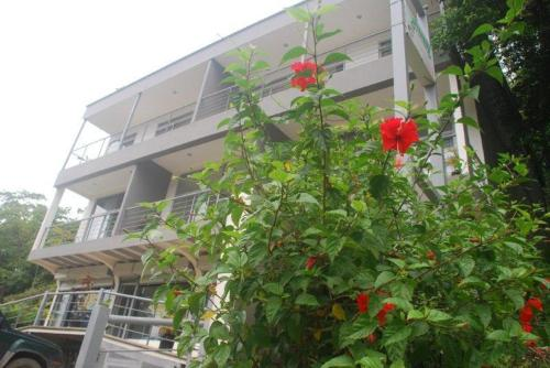 Altamar Beach Apartments & Backpackers Photo