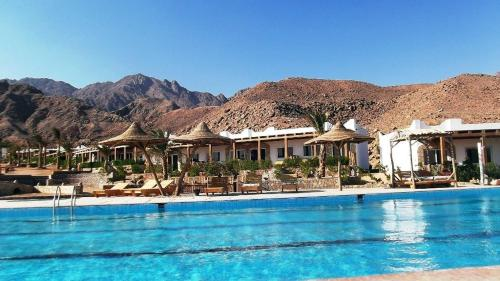 Canyon Estate Residence Dahab Photo