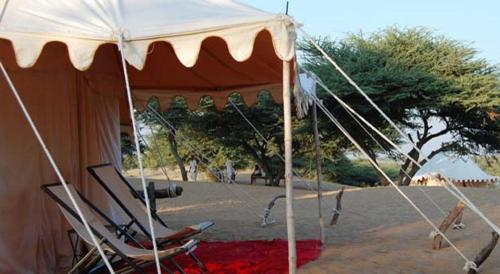 Royal Desert Safari Resort and Camp Photo