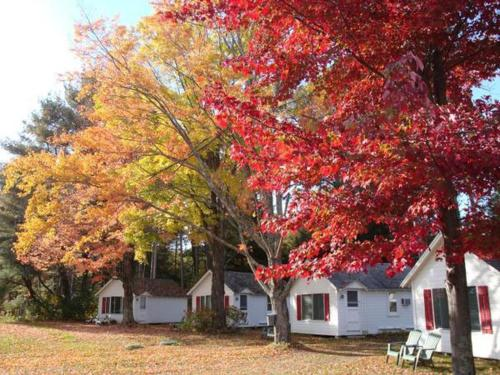 Cozy Cottages and Otter Valley Winery Photo