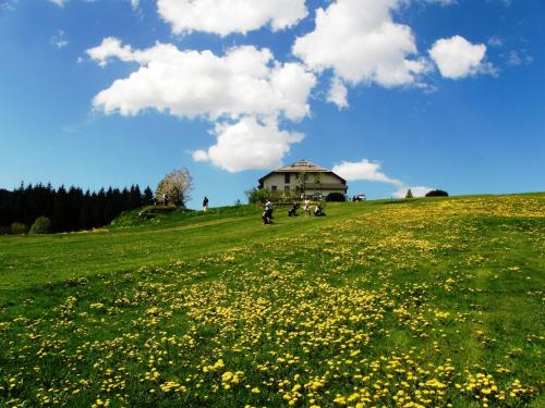 online booking Asiago lodging Meltar Boutique Hotel