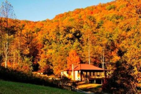 Snug Hollow Farm Bed and Breakfast Photo