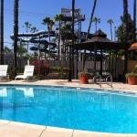 Knotts Berry Farm Hotels - Best Host Inn