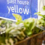 Yellow Guesthouse, Jeju, Korea