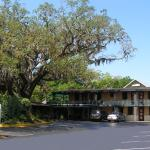 Scottish Inn - Saint Augustine