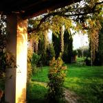 Country House alle Rose