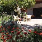 Monte degli Angeli Farm stay