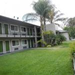 Los Angeles County Fair Hotels - Lemon Tree Motel