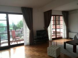 Luxury Apartment in Sv Jovan, Skopje