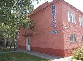 "Mini-hotel ""Medovyj"", Vologda"
