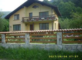 Villa Ribarica, Ribarica