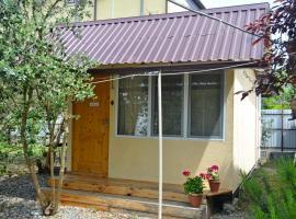 Guest House on Nazadze 41A, Lidzava