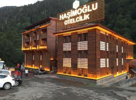 Ayder Hasimoglu Hotel, Яйла-Айдер