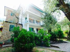 Large apartment in an olive trees garden, 马尔切西内