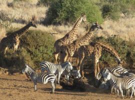 Satao Elerai, Amboseli