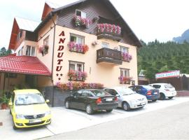 Casa Andutu, Buşteni