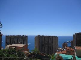 1Bedroom Apartment TOP OF MONACO with seaview, Beausoleil