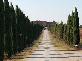 Borgo Beccanella, Asciano