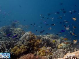 Wellbeach Dive Resort, Дауин