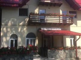 Vila David, Sinaia