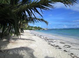 Bambou, Saint-François