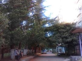 Квартира, Pizunda