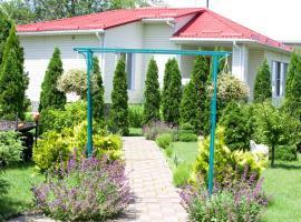 House for soul, Vinnytsya