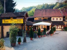 Guest House pri Vodniku, Liubliana