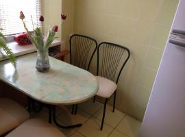 Two bedroom city center flat, Leopoli