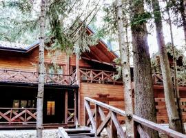Bober HOUSE, Mykulychyn