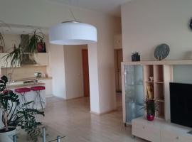 Erdvūs apartamentai, Vilnius
