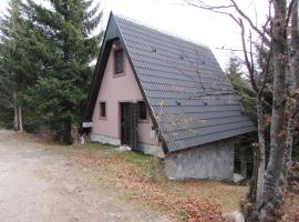 Holiday Home Kragovic, Kopaonik