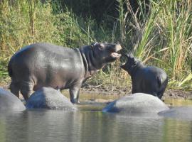 Our Villa Kruger Park, Hazyview