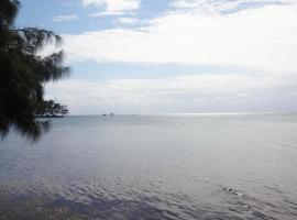 Salty Scuba Beach House, Crawfish Rock