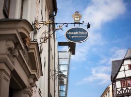 Altstadt Palais