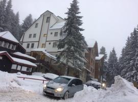 Apartment Lazic vila Suri, Kopaonik